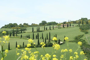 Orcia6